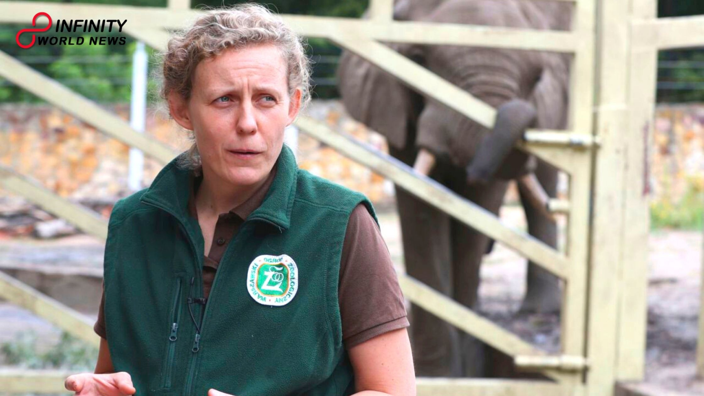Polish Zoo to Give Hemp Oil to Stressed Out Elephants So That They Can Stop Fighting and Chill