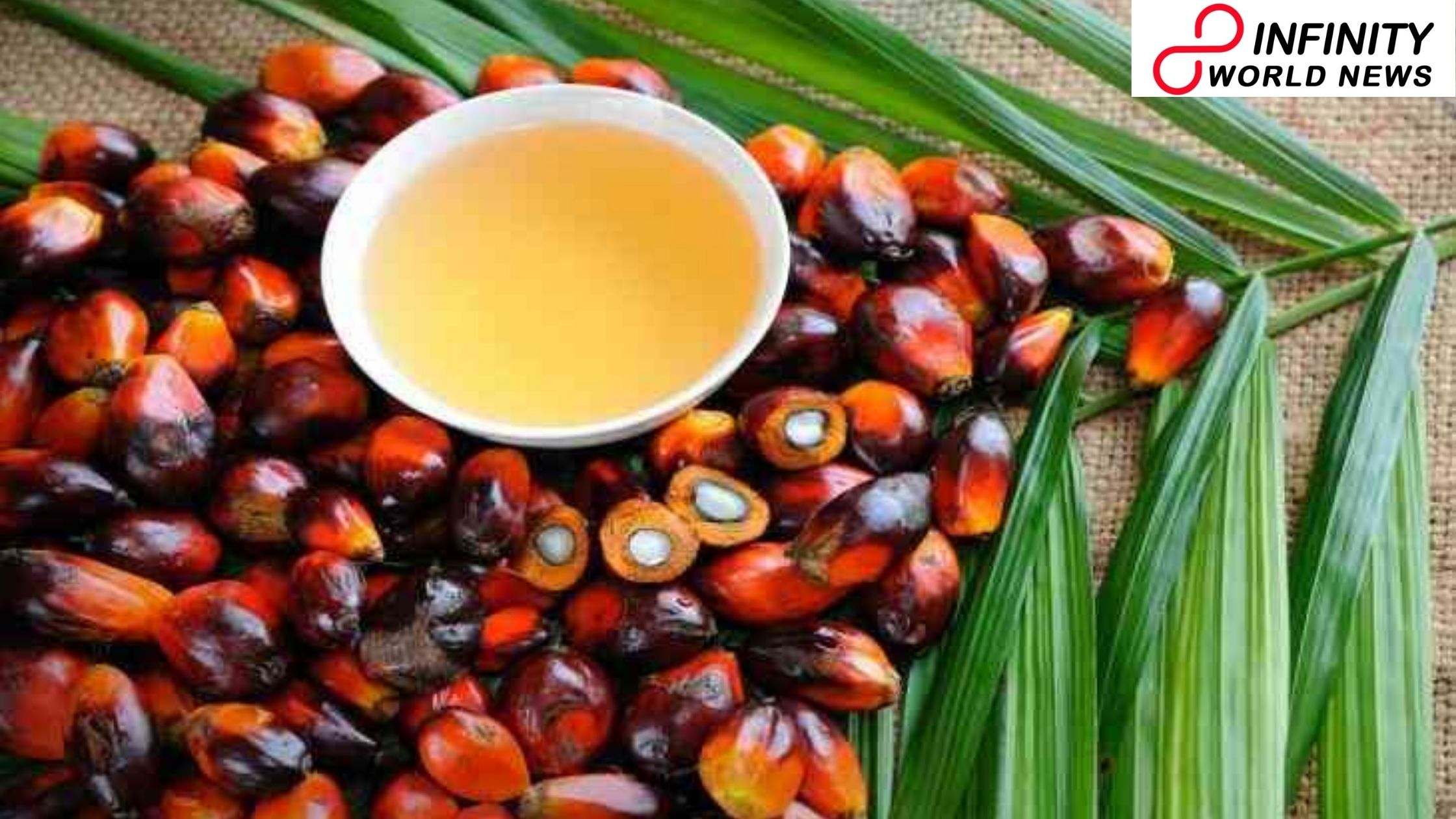Vitamin E of palm oil helps in boosting safe reaction, discovers the study
