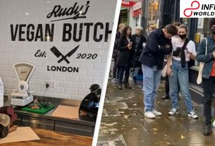 Where's the meat_ UK's first vegetarian butcher's dispatches