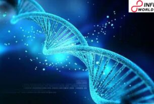 Inappropriate DNA division prompts formative human issue: Study