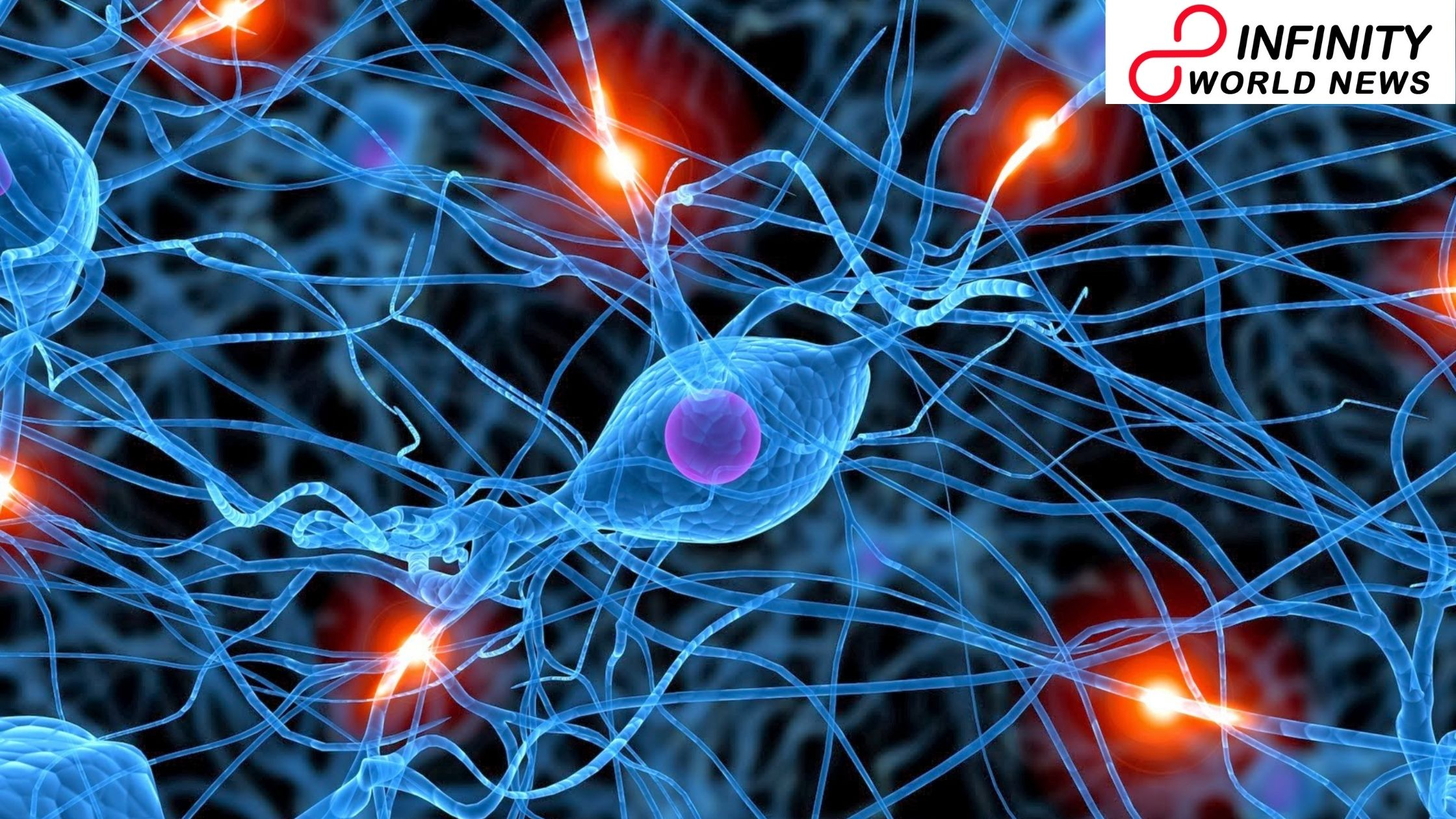 New Study Recommends Injury to Axon Can Prevent Neuron Growth