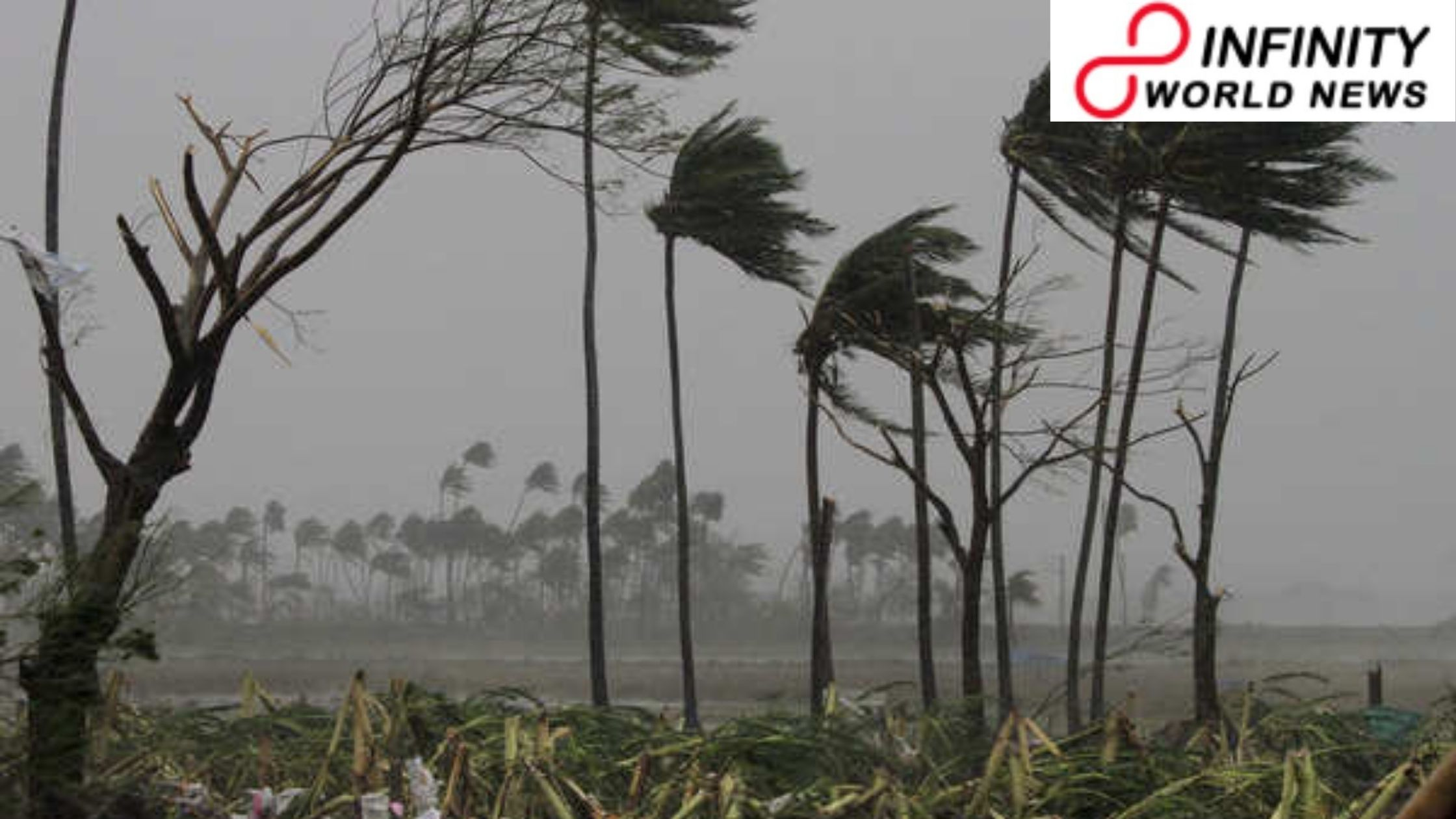 Typhoon Burevi Dissipates Over Gulf of Mannar; Rainfall to Continue Till Monday
