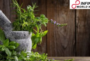 Depend on these herbs to improve your immunity