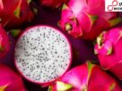Dragon Fruit Benefits: 5 Wondrous Health Benefits of This Bright Pink Fruit