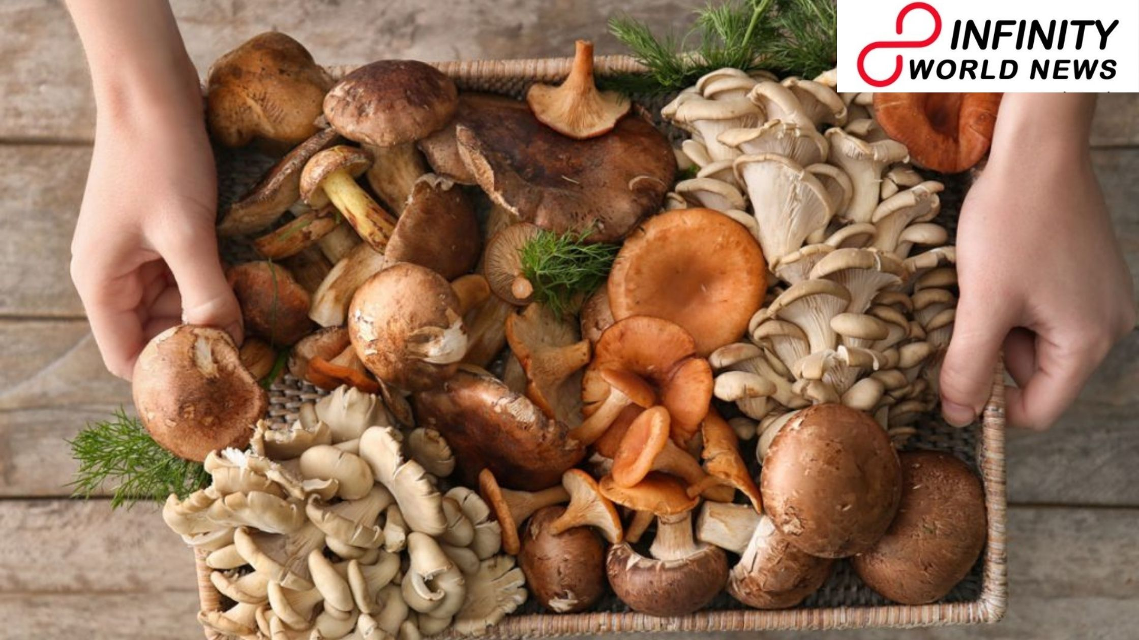 Eating more mushrooms can give essential nutrients to buyers' diets