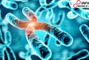 Analysts recognize genes that expansion the danger of obesity yet, besides, ensure against sickness