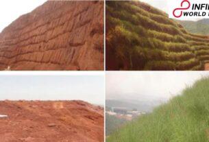 IIT Kharagpur develops steel plant's slag dumps into greenbelts in Odisha