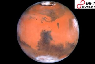 Microbes of Earth Could Sustain on Martian Surface, Shows Study