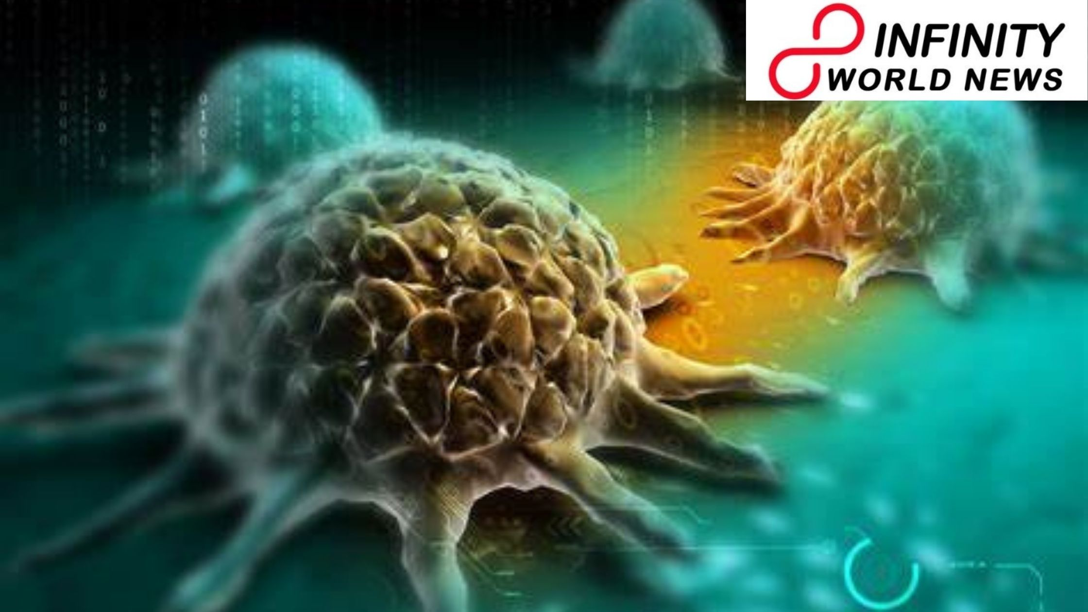 Top 3 Cancers in Women That We Must know about